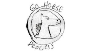 Resultado de imagem para extreme go horse